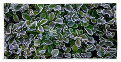 Frosty Hedgerow Beach Towel