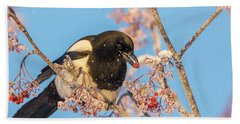 Frosty Magpie Beach Towel