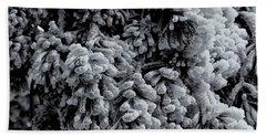 Frozen Beach Sheet by Alan Vance Ley