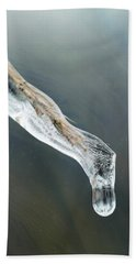 Frozen Pampas Grass Plume  Beach Towel