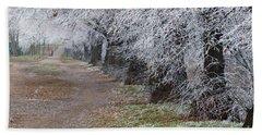 Frozen Pathway Beach Sheet