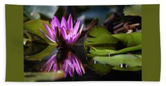 Beach Towel featuring the photograph Fuchsia Dreams by Suzanne Gaff