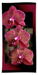 Fuchsia Orchids Oof Beach Towel