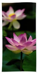 Full Blooming Dual Lotus Lilies Beach Towel