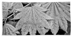 Full Moon Maple Leaf After A Spring Rain Beach Towel