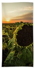 Beach Sheet featuring the photograph Full Of Seed  by Aaron J Groen