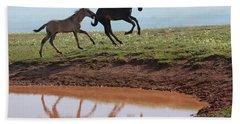 Fun In The Rockies- Wild Horse Foals Beach Towel
