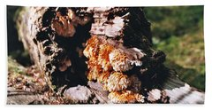 Fungus Is Beautiful Beach Sheet