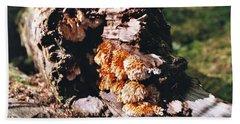 Fungus Is Beautiful Beach Towel
