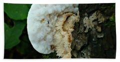 Fungus Beach Sheet