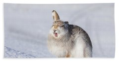 Funny Face - Mountain Hare - Scottish Highlands  #13 Beach Sheet