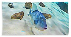 Funny Fish Beach Sheet