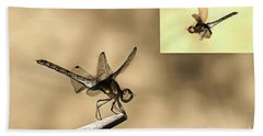 Furniture And Flying Dragonfly Beach Sheet by Odon Czintos