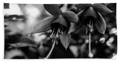 Fuchsia, Black And White Beach Sheet