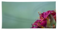 Fuchsia In Bloom Beach Towel by Andrea Silies