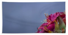 Fuchsia On Slate Beach Towel by Andrea Silies