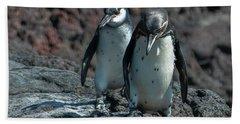 Galapagos Penguins  Bartelome Island Galapagos Islands Beach Towel