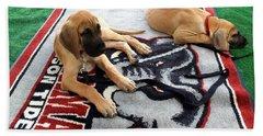 Gameday Great Dane Puppies Beach Towel