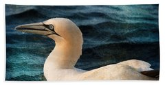 Gannet Swim Beach Towel