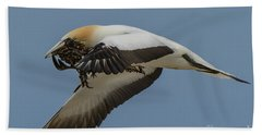 Beach Sheet featuring the photograph Gannets 1 by Werner Padarin