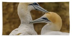 Gannets 4 Beach Towel by Werner Padarin