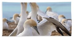 Beach Towel featuring the photograph Gannets by Werner Padarin