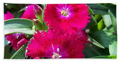 Beach Towel featuring the photograph Garden Delight by Sandi OReilly