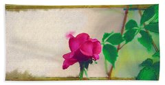 Beach Towel featuring the digital art Garden Rose by Holly Ethan