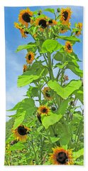 Garden Splendor Beach Towel