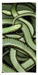 Garter Snakes Pattern Beach Towel by James Larkin