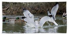 Gathering Of Egrets Beach Towel