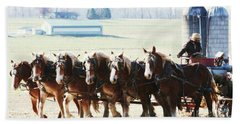 Gathering Up The Hay With A Six Horse Teamin Lancaster County Pennsylvania Beach Towel
