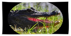 Beach Sheet featuring the photograph Gator Grin .png by Al Powell Photography USA