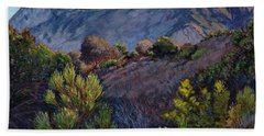 Gaviota Afternoon Beach Towel