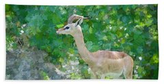 Beach Towel featuring the painting Gazelle Impressions by Judy Kay