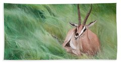 Gazelle In The Grass Beach Towel
