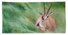 Gazelle In The Grass Beach Sheet by Joshua Martin
