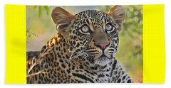 Gazing Leopard Beach Sheet