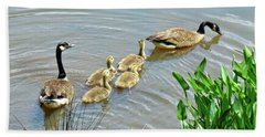 Geese And Goslings Beach Sheet by Ludwig Keck