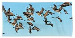 Geese In Flight Beach Towel