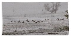 Geese Walking In The Snow Beach Towel