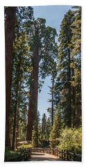 General Grant Tree Kings Canyon National Park Beach Towel