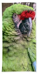 George The Parrot Beach Towel