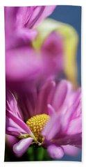 Gerber Daisy In Purple Beach Sheet