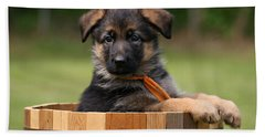 German Shepherd Puppy In Planter Beach Sheet