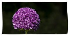 Beach Towel featuring the photograph Giant Allium 2 by Andrea Silies