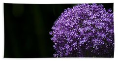 Beach Towel featuring the photograph Giant Allium by Andrea Silies