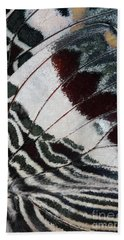 Giant Charaxes Butterfly Beach Towel