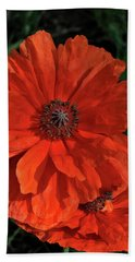 Giant Mountain Poppy Beach Sheet