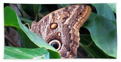 Giant Owl Butterfly Beach Towel